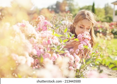 smell of the flower
