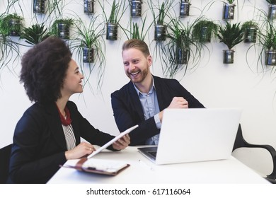 Smiled and confident multiracial business man and woman working together in modern office.