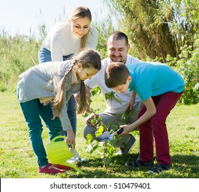 Smiling adult family of four planting a tree outdoors in a sunny weather