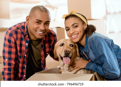 smiling african american couple with labrador dog in cardboard box