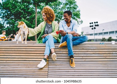 Smiling african american friends enjoying free time together playing with lovely dog,young dark-skinned girl petting akita inu resting on weekends in park while her boyfriend showing picture in mobile