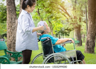 Smiling asian female caregiver or daughter combing hair of senior mother in wheelchair in green nature,careful woman is combing old people hair,care,support in outdoor park,concept elderly care