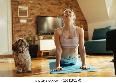 Smiling athletic woman in cobra pose practicing Yoga with her dog at home.