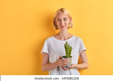 smiling attractive cheerful young woman looking at camera and holding pot plant on palms.isolated yellow background, close up portrait, studio shot.plant care