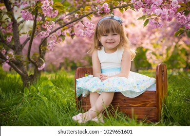 smiling baby girlsitting under the pink blossom sakura tree spring enspiration