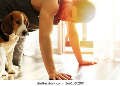 Smiling bearded man doing exercises push ups against the window at home with his dog