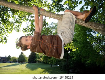 smiling boy hanging from a tree branch