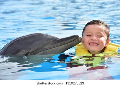 Smiling boy kissing dolphin in pool.