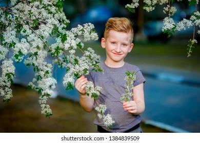 smiling boy near a flowering tree