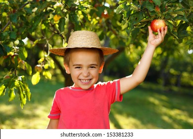 Smiling boy piking up an apple