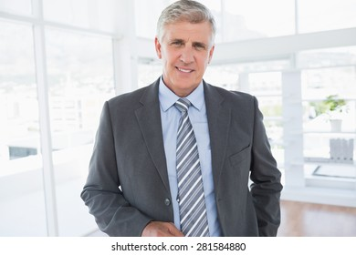 Smiling businessman looking at camera in the office