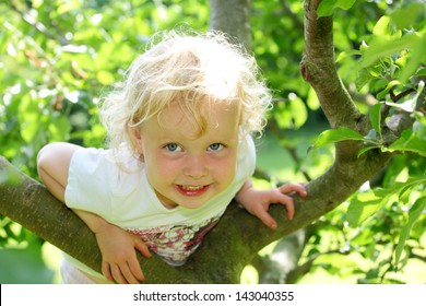 Smiling child climbing a tree in the garden