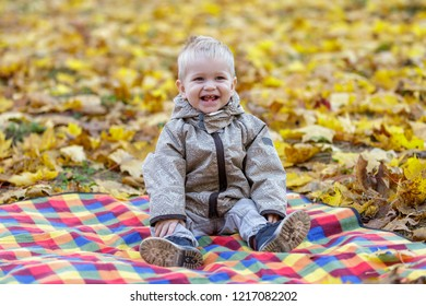 Smiling child sitting on golden leaves carpet outdoors.