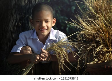 Smiling of country boy at at Suphanburi Province in Thailand and Thai rice in his hand. Thai rice is a very high quality export product and is popular all over the world make money for Thai farmers.