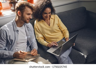 Smiling cute concentrated young man and his joyous female colleague gazing at the computer screen