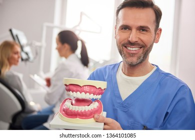 Smiling dentist showing an artificial dentures