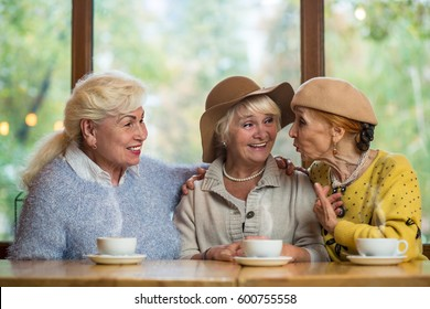 Smiling elderly ladies in cafe. Conversation of women. The happy friends.