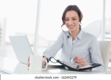 Smiling elegant businesswoman with laptop and diary in a bright office
