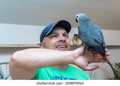 Smiling face of man holding beautiful African gray parrot on his hand