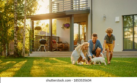 Smiling Father, Mother and Son Pet and Play with Smooth Fox Terrier Retriever Dog. Sun Shines on Idyllic Happy Family with Loyal Pedigree Dog have Fun at the Idyllic Suburban House Backyard
