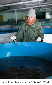 Smiling female worker inspecting young sturgeon in fish tank on farm