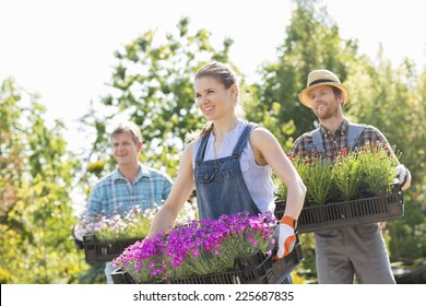 Smiling gardeners carrying crates with flower pots at plant nursery