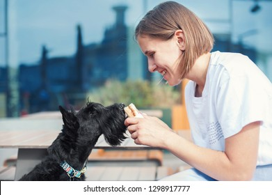 smiling girl holding a sandwich in front of a scottish terrier dog on the blurred city background. Side view