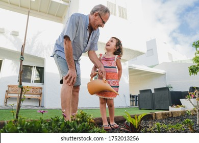 Smiling grandfather and granddaughter in backyard garden together, holding watering can have fun plants. Two generation fun time spend outdoor activity share hobby