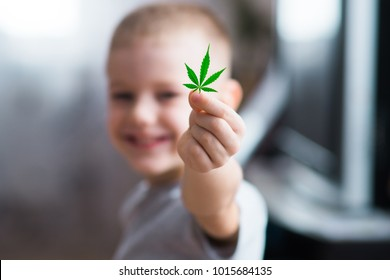 Smiling kid child holding a hemp leaf. Concepts of using marihuna for medicinal purposes for children, Medical use of non-psychoactive cannabidiol CBD
