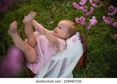 smiling laughing happy baby girl in spring background of pink blossom of sakura tree sitting in baby bed