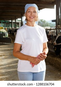 Smiling mature female proffesional farmer  standing near cows  at  farm
