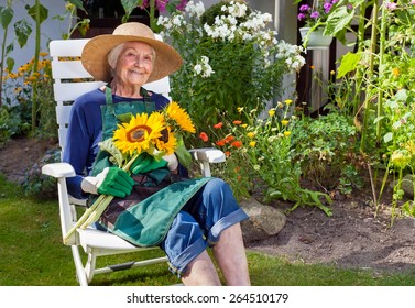 Smiling Old Woman with Hat  Apron and Gloves for Gardening Sitting on a White Chair Holding a Bouquet of Sunflowers  Looking at the Camera.