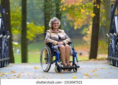 smiling old woman sitting on a wheelchair in the park