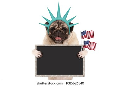 smiling pug puppy dog holding up American flag and blank blackboard sign, wearing lady Liberty crown, isolated on white background