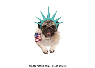 smiling pug puppy dog holding American flag, hanging on white banner, wearing lady Liberty crown, isolated