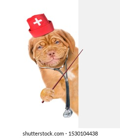 Smiling puppy dressed like a doctor with a stethoscope on his neck pointing on empty white banner. isolated on white background
