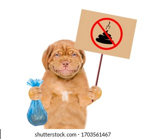"Smiling puppy holds plastic bag and sign ""no dog poop"". Concept cleaning up dog droppings. isolated on white background"
