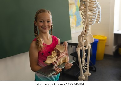 Smiling schoolgirl holding anatomical model and looking at camera in classroom of elementary school