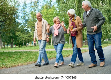 Smiling senior friends wearing knitted sweaters and cardigans walking along park alley and chatting animatedly with each other, picturesque view on background