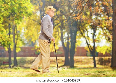 Smiling senior gentleman walking with a cane in a park, in autumn
