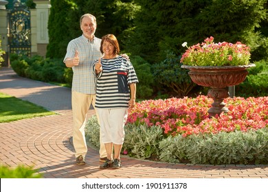Smiling senior loving couple with their thumbs up. Blossoming summer park background.