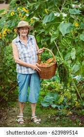Smiling senior woman with a basket of harvested vegetables and sunflowers in the background