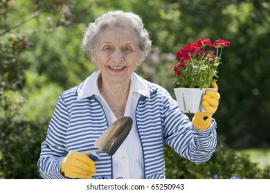 A smiling senior woman is standing with a trowel and holding a starter plant she is getting ready to plant. Horizontal shot.