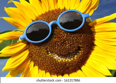 Smiling sunflower with blue sunglasses
