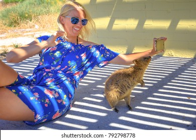 Smiling tourist takes selfie with at Quokka on Rottnest Island, Western Australia. Quokka is typical animal of the island, it is friendly with people and considered the happiest animal in the world.