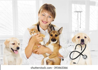 smiling vet and puppy and kitten in clinic
