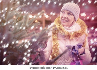 Smiling woman is buying Christmas tree in the market outdoor.