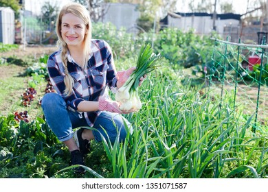 Smiling woman  horticulturist holding harvest of green onion  in  garden