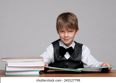 Smiling young boy at the desk reads a book