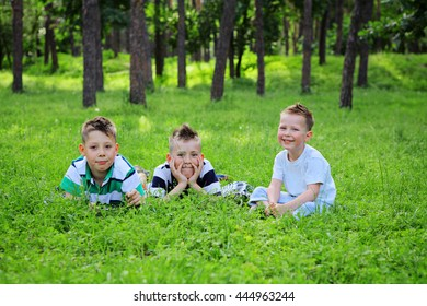 Smiling young boys lying on green grass and looking to the camera. Three Dreaming adorable brothers lying on grass